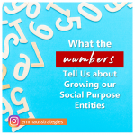 What the Numbers Tell Us about Growing our Social Purpose Entities
